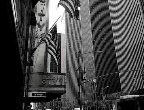 New York in November / Photo Gallery